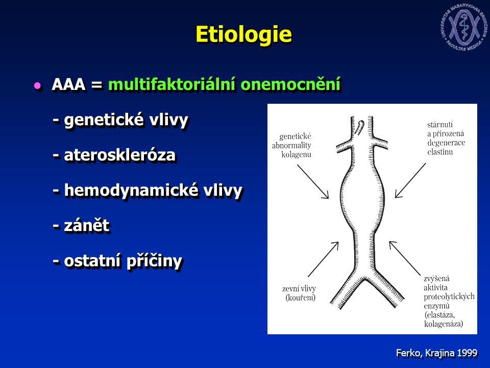 Etiologie AAA = multifaktoriální onemocnění AAA = multifaktoriální onemocnění - genetické vlivy - genetické vlivy - ateroskleróza - ateroskleróza - hemodynamické vlivy - hemodynamické vlivy - zánět - zánět - ostatní příčiny - ostatní příčiny AAA = multifaktoriální onemocnění AAA = multifaktoriální onemocnění - genetické vlivy - genetické vlivy - ateroskleróza - ateroskleróza - hemodynamické vlivy - hemodynamické vlivy - zánět - zánět - ostatní příčiny - ostatní příčiny Ferko, Krajina 1999