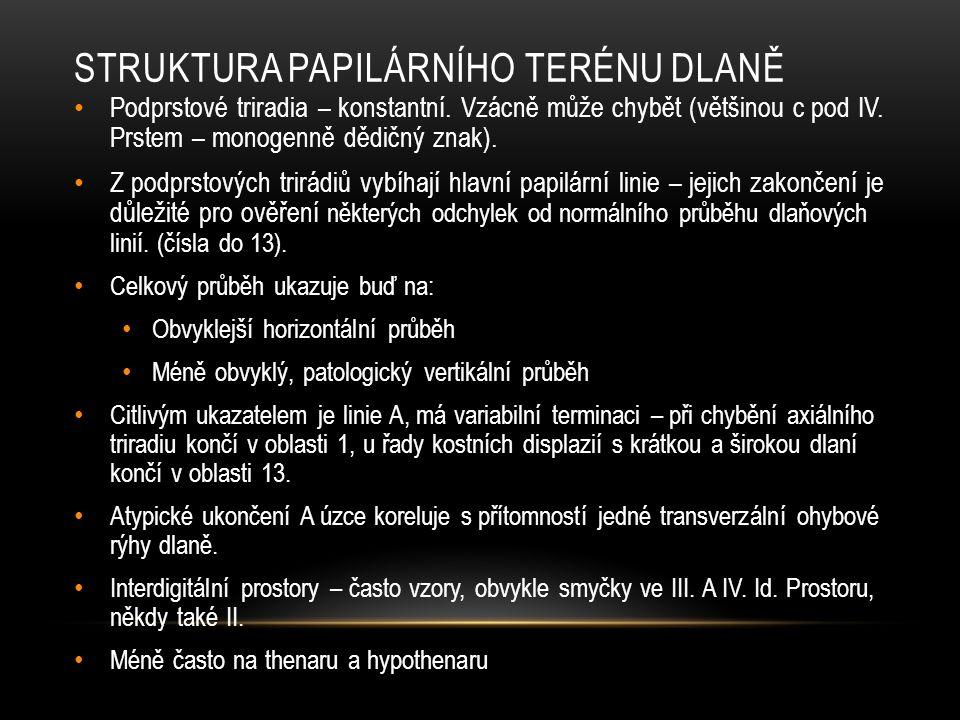 STRUKTURA PAPILÁRNÍHO TERÉNU DLANĚ Podprstové triradia – konstantní.