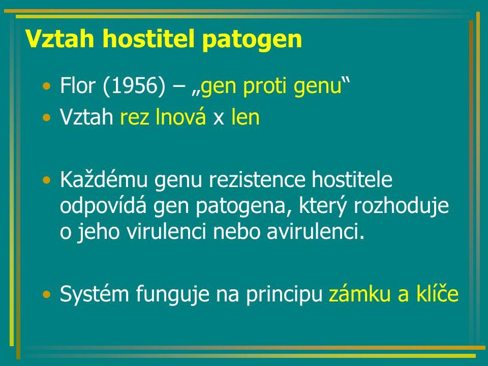 """Vztah hostitel patogen Flor (1956) – """"gen proti genu Vztah rez lnová x len Každému genu rezistence hostitele odpovídá gen patogena, který rozhoduje o jeho virulenci nebo avirulenci."""