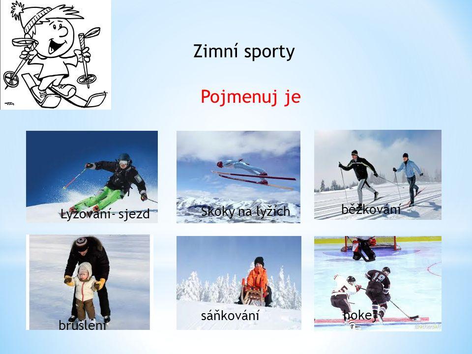 Zimní sporty Pojmenuj je Lyžování- sjezd Skoky na lyžích běžkování bruslení sáňkování hokej