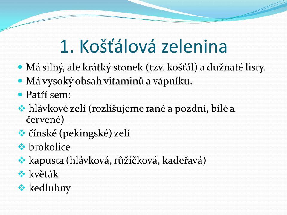 2.Kořenová zelenina Jsou to kořeny, bulvy, případně oddenky či hlízy rostlin.