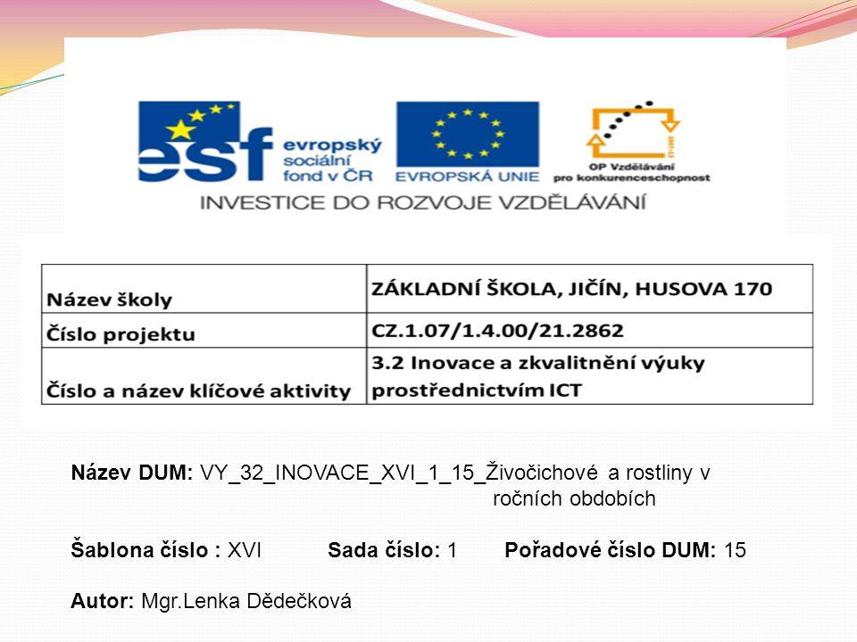 VLAŠTOVKA OBECNÁ SRNA A SRNČE http://commons.wikimedia.org/wiki/File:K%C5%99enovice_- _vla%C5%A1tovka.jpg http://www.puzzle-prodej.cz/srnka/ KOČKY http://misapes.blog.cz/0805/kotata MOTÝL – vlastní foto http://www.zenyprozeny.cz/art/1175-plnene-bedly/ BEDLA JEDLÁ http://www.houbareni.cz/houba.php?id=147 VÁCLAVKA SMRKOVÁ
