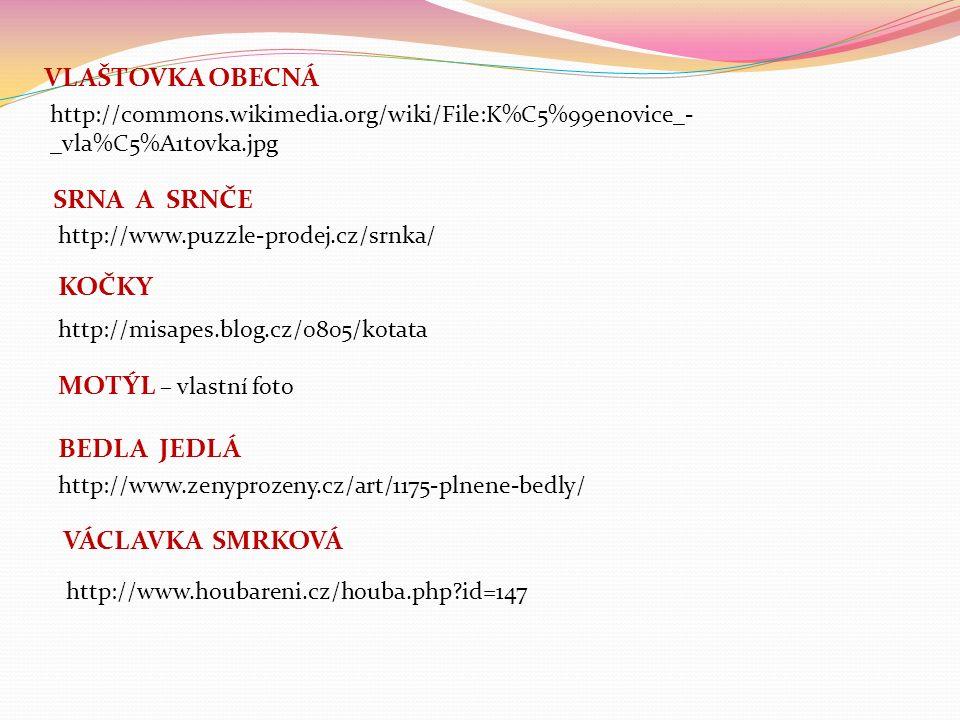 VLAŠTOVKA OBECNÁ SRNA A SRNČE http://commons.wikimedia.org/wiki/File:K%C5%99enovice_- _vla%C5%A1tovka.jpg http://www.puzzle-prodej.cz/srnka/ KOČKY http://misapes.blog.cz/0805/kotata MOTÝL – vlastní foto http://www.zenyprozeny.cz/art/1175-plnene-bedly/ BEDLA JEDLÁ http://www.houbareni.cz/houba.php id=147 VÁCLAVKA SMRKOVÁ