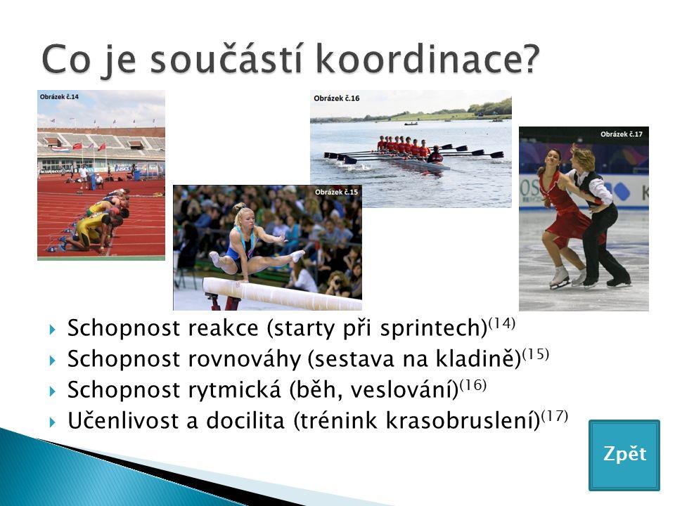  Schopnost reakce (starty při sprintech) (14)  Schopnost rovnováhy (sestava na kladině) (15)  Schopnost rytmická (běh, veslování) (16)  Učenlivost a docilita (trénink krasobruslení) (17) Zpět