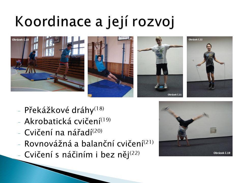 - Překážkové dráhy (18) - Akrobatická cvičení (19) - Cvičení na nářadí (20) - Rovnovážná a balanční cvičení (21) - Cvičení s náčiním i bez něj (22)