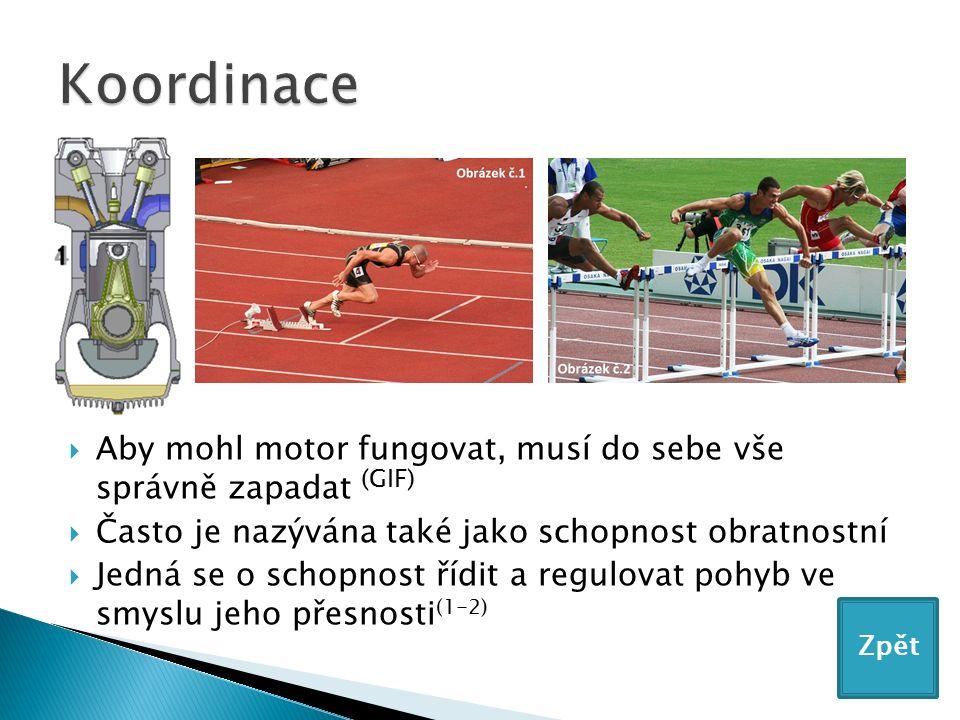  Aby mohl motor fungovat, musí do sebe vše správně zapadat (GIF)  Často je nazývána také jako schopnost obratnostní  Jedná se o schopnost řídit a regulovat pohyb ve smyslu jeho přesnosti (1-2) Zpět