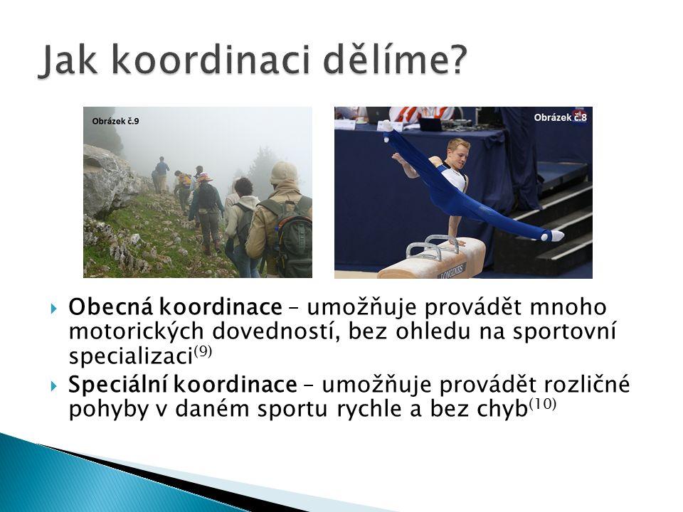  Obecná koordinace – umožňuje provádět mnoho motorických dovedností, bez ohledu na sportovní specializaci (9)  Speciální koordinace – umožňuje provádět rozličné pohyby v daném sportu rychle a bez chyb (10)