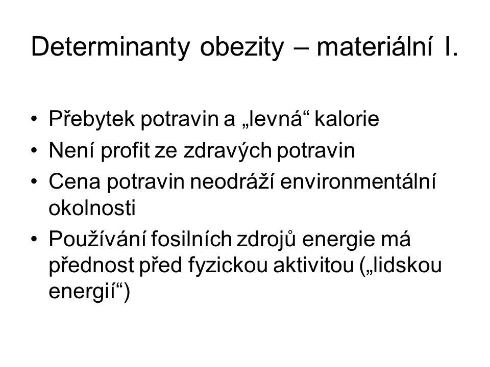 Sociální percepce obezity II.