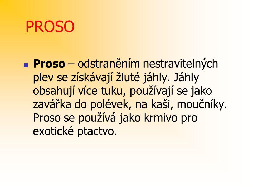 PROSO Proso – odstraněním nestravitelných plev se získávají žluté jáhly. Jáhly obsahují více tuku, používají se jako zavářka do polévek, na kaši, mouč