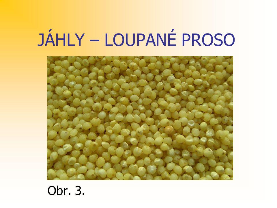 JÁHLY – LOUPANÉ PROSO Obr. 3.