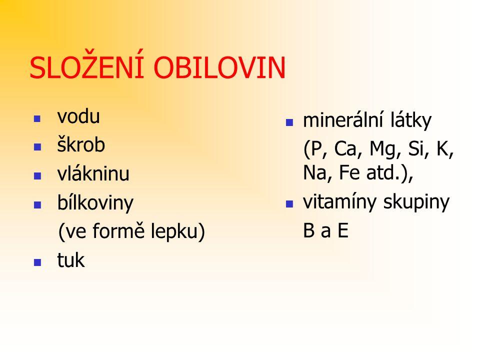 SLOŽENÍ OBILOVIN vodu škrob vlákninu bílkoviny (ve formě lepku) tuk minerální látky (P, Ca, Mg, Si, K, Na, Fe atd.), vitamíny skupiny B a E