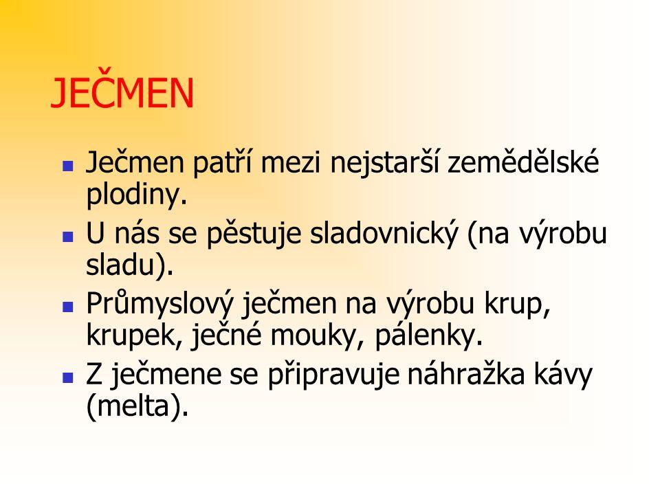 JEČMEN Ječmen patří mezi nejstarší zemědělské plodiny.