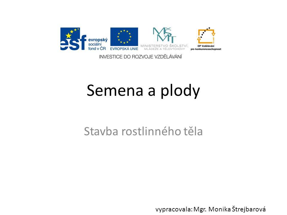 Semena a plody Stavba rostlinného těla vypracovala: Mgr. Monika Štrejbarová
