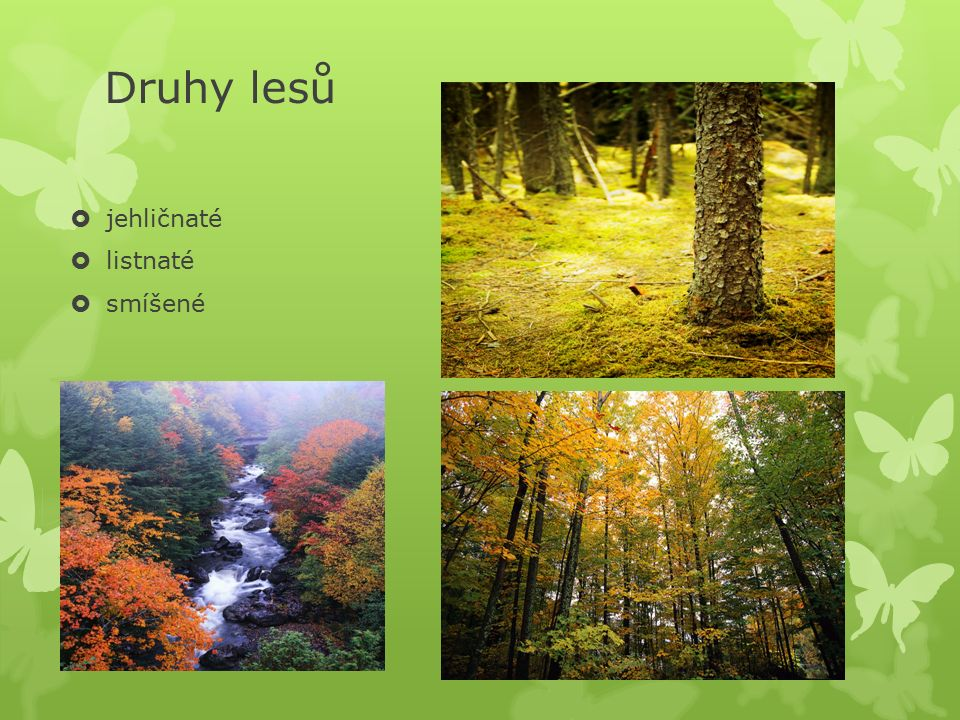 Anotace: Prezentace je zaměřena na učivo přírodovědy 4.