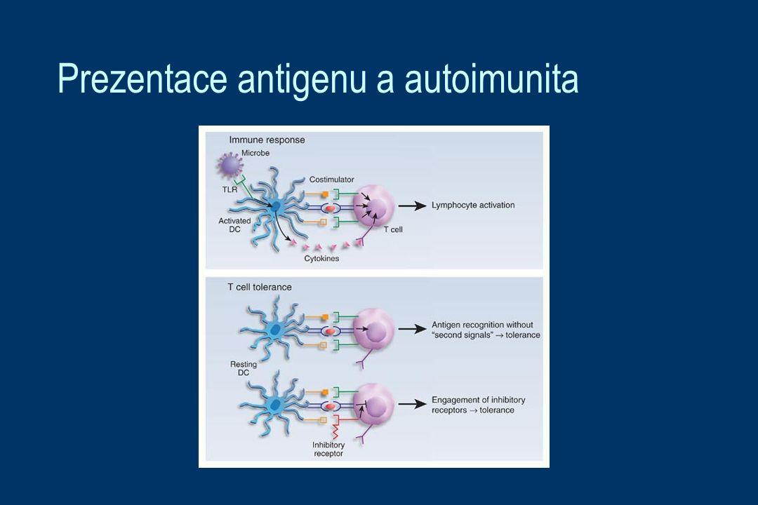 Prezentace antigenu a autoimunita