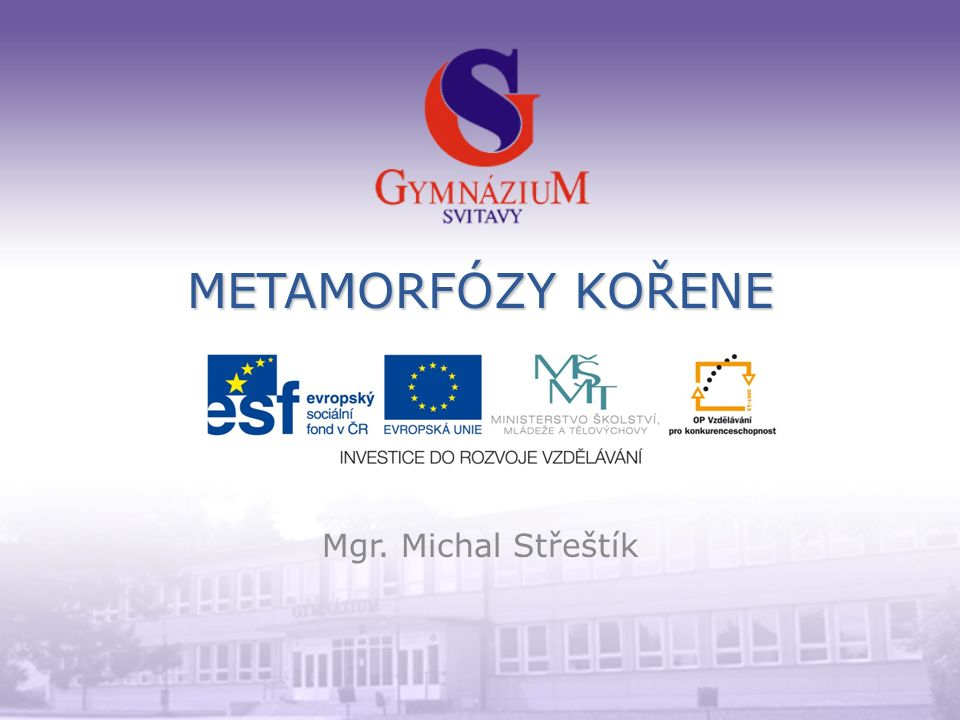 METAMORFÓZY KOŘENE Mgr. Michal Střeštík