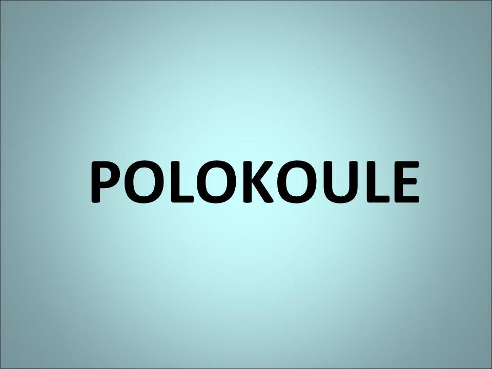 POLOKOULE