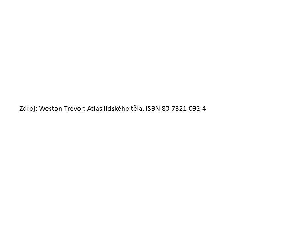 Zdroj: Weston Trevor: Atlas lidského těla, ISBN 80-7321-092-4