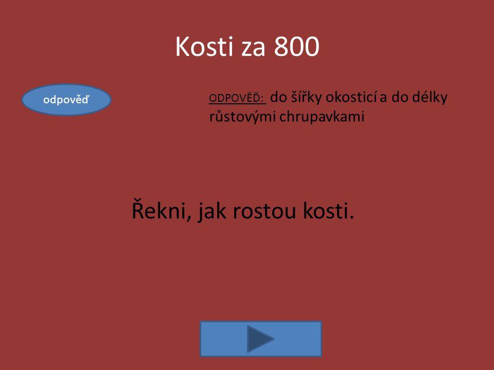 Kosti za 800 ODPOVĚĎ: do šířky okosticí a do délky růstovými chrupavkami Řekni, jak rostou kosti.