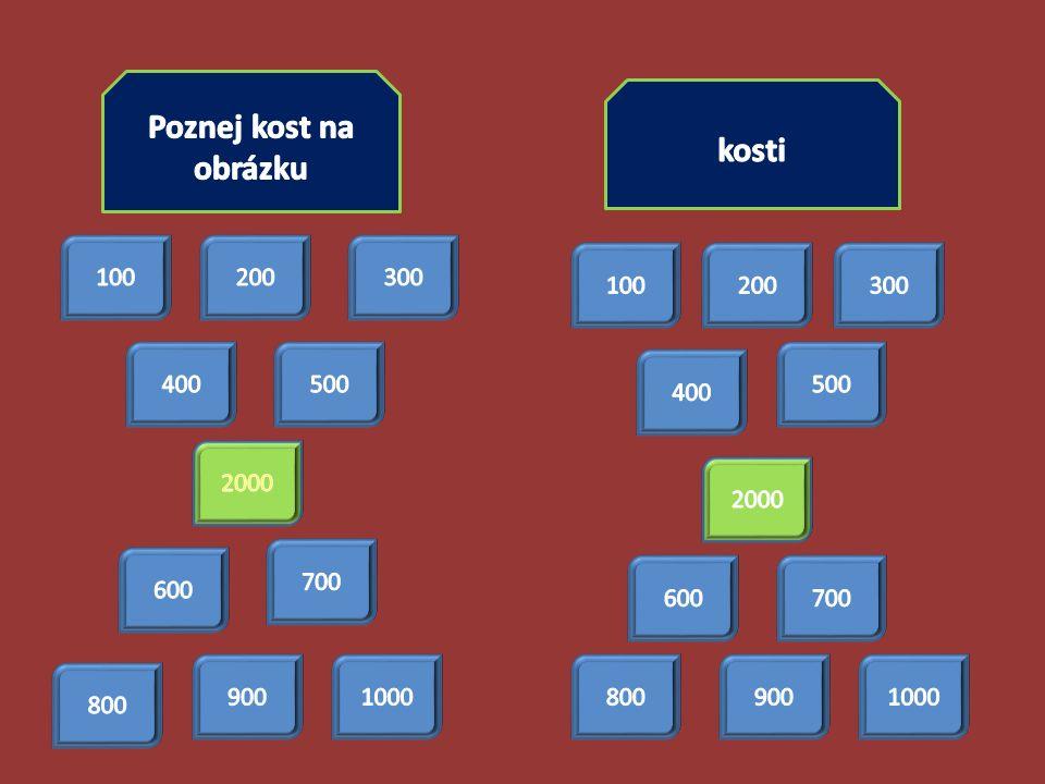 Poznej kost na obrázku za 100 ODPOVĚĎ: kost klíční odpověď