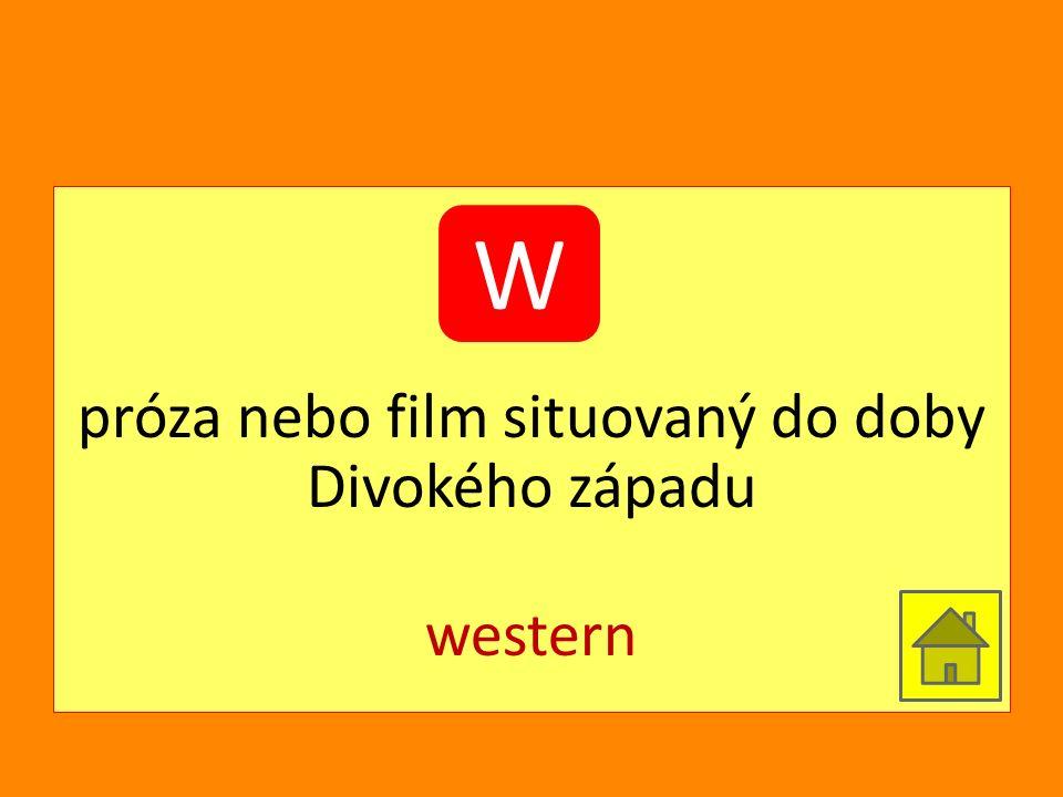 próza nebo film situovaný do doby Divokého západu western W