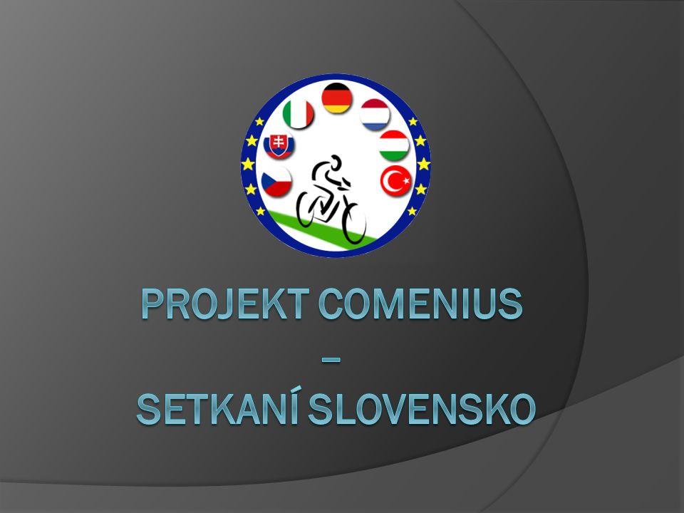 Obsah 1.Odjezd 2. Hotel 3. Oficiální uvítání 4. Slovenská škola v Šal'e 5.