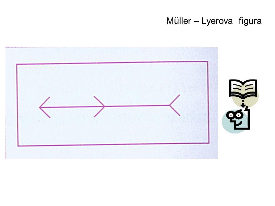 Müller – Lyerova figura