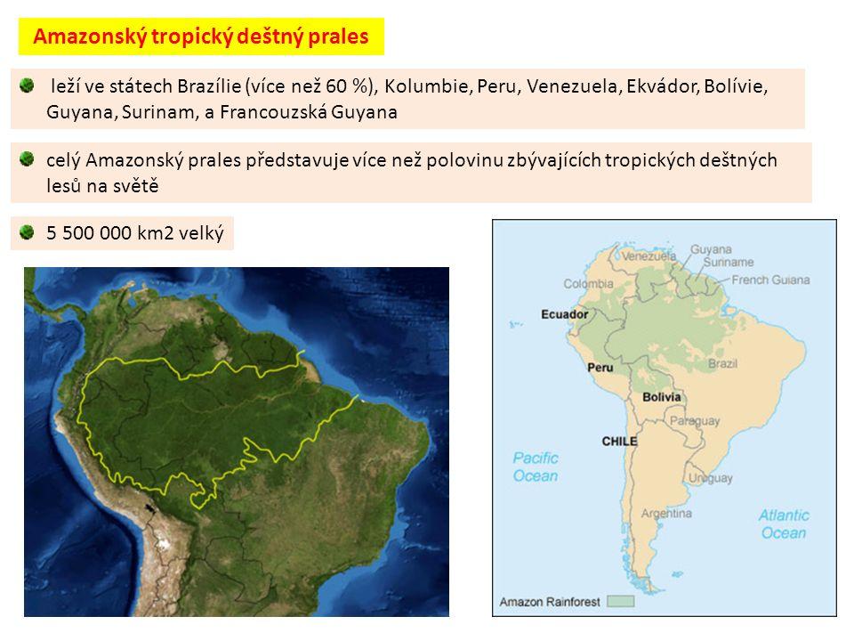 5 500 000 km2 velký Amazonský tropický deštný prales leží ve státech Brazílie (více než 60 %), Kolumbie, Peru, Venezuela, Ekvádor, Bolívie, Guyana, Surinam, a Francouzská Guyana celý Amazonský prales představuje více než polovinu zbývajících tropických deštných lesů na světě