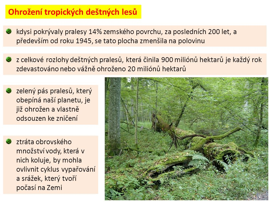 kdysi pokrývaly pralesy 14% zemského povrchu, za posledních 200 let, a především od roku 1945, se tato plocha zmenšila na polovinu z celkové rozlohy deštných pralesů, která činila 900 miliónů hektarů je každý rok zdevastováno nebo vážně ohroženo 20 miliónů hektarů zelený pás pralesů, který obepíná naší planetu, je již ohrožen a vlastně odsouzen ke zničení ztráta obrovského množství vody, která v nich koluje, by mohla ovlivnit cyklus vypařování a srážek, který tvoří počasí na Zemi Ohrožení tropických deštných lesů
