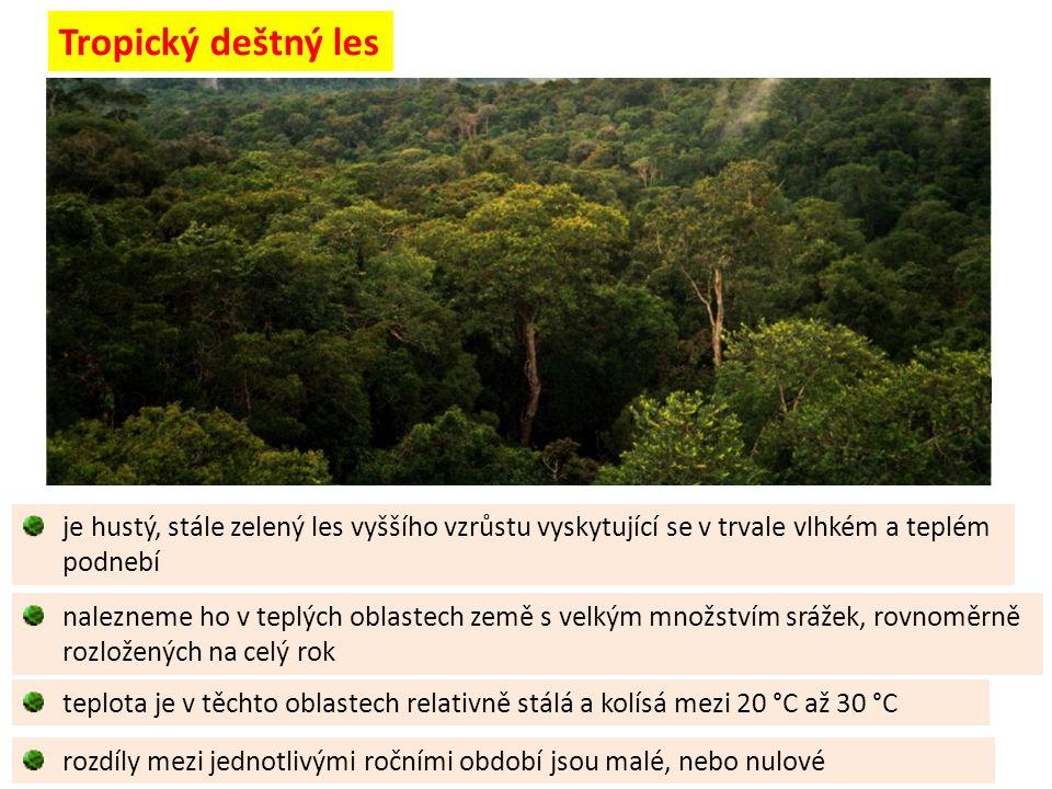 je hustý, stále zelený les vyššího vzrůstu vyskytující se v trvale vlhkém a teplém podnebí Tropický deštný les teplota je v těchto oblastech relativně stálá a kolísá mezi 20 °C až 30 °C nalezneme ho v teplých oblastech země s velkým množstvím srážek, rovnoměrně rozložených na celý rok rozdíly mezi jednotlivými ročními období jsou malé, nebo nulové