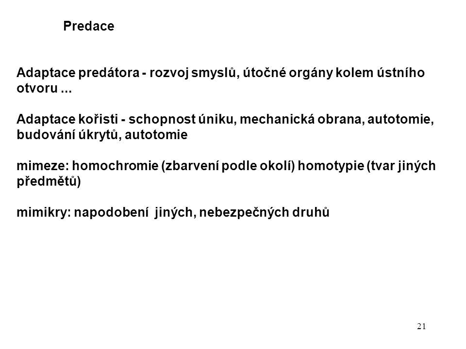 21 Predace Adaptace predátora - rozvoj smyslů, útočné orgány kolem ústního otvoru...