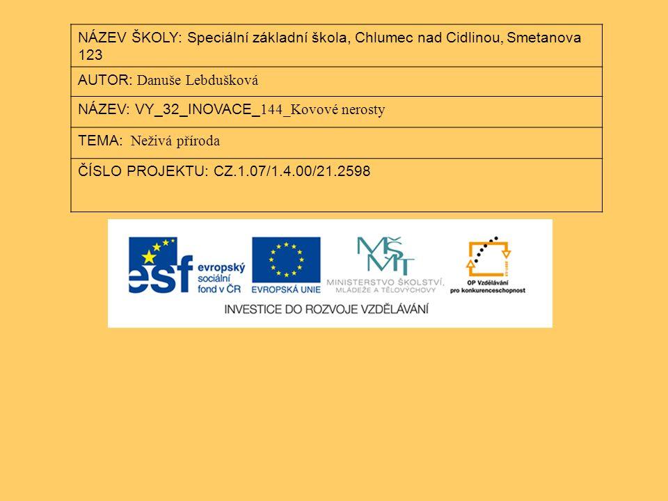 NÁZEV ŠKOLY: Speciální základní škola, Chlumec nad Cidlinou, Smetanova 123 AUTOR: Danuše Lebdušková NÁZEV: VY_32_INOVACE_ 144_Kovové nerosty TEMA: Neživá příroda ČÍSLO PROJEKTU: CZ.1.07/1.4.00/21.2598
