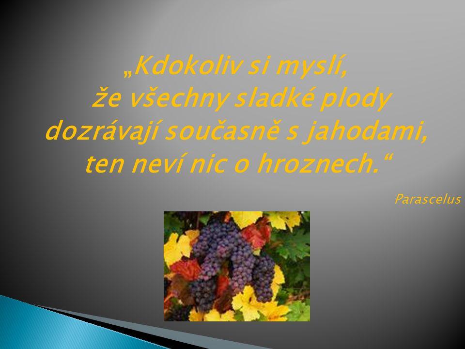 """""""Kdokoliv si myslí, že všechny sladké plody dozrávají současně s jahodami, ten neví nic o hroznech. Parascelus"""