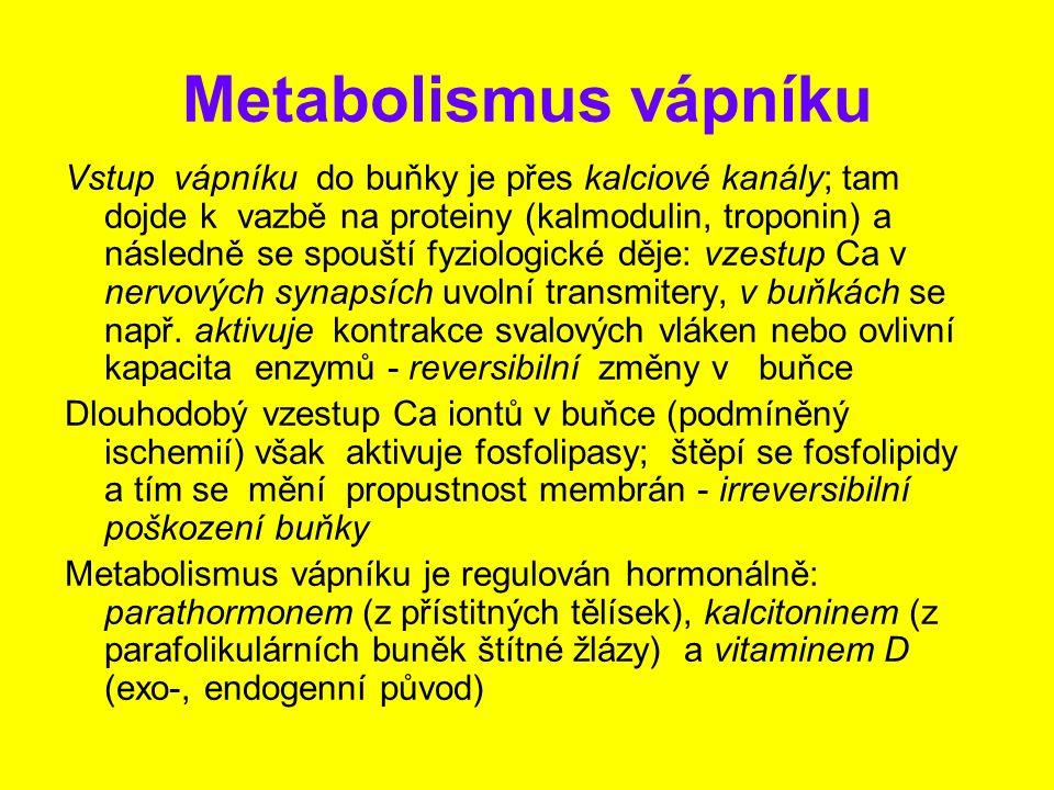 Metabolismus vápníku Vstup vápníku do buňky je přes kalciové kanály; tam dojde k vazbě na proteiny (kalmodulin, troponin) a následně se spouští fyziol