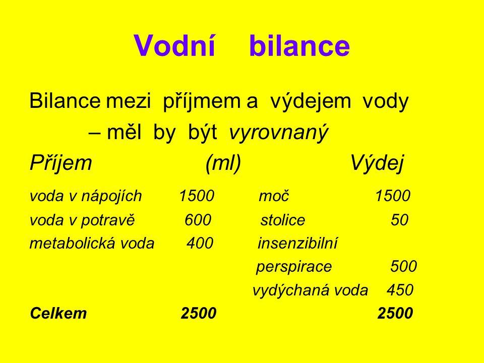 Vodní bilance Bilance mezi příjmem a výdejem vody – měl by být vyrovnaný Příjem (ml) Výdej voda v nápojích 1500 moč 1500 voda v potravě 600 stolice 50