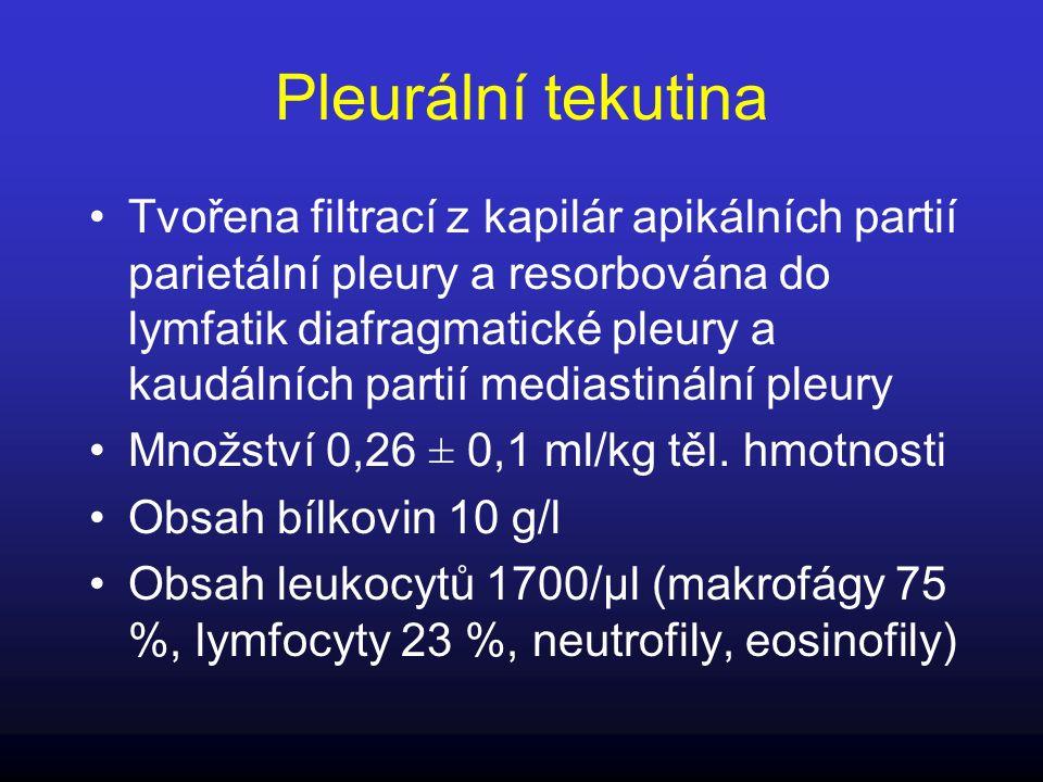 Pleurální tekutina Tvořena filtrací z kapilár apikálních partií parietální pleury a resorbována do lymfatik diafragmatické pleury a kaudálních partií