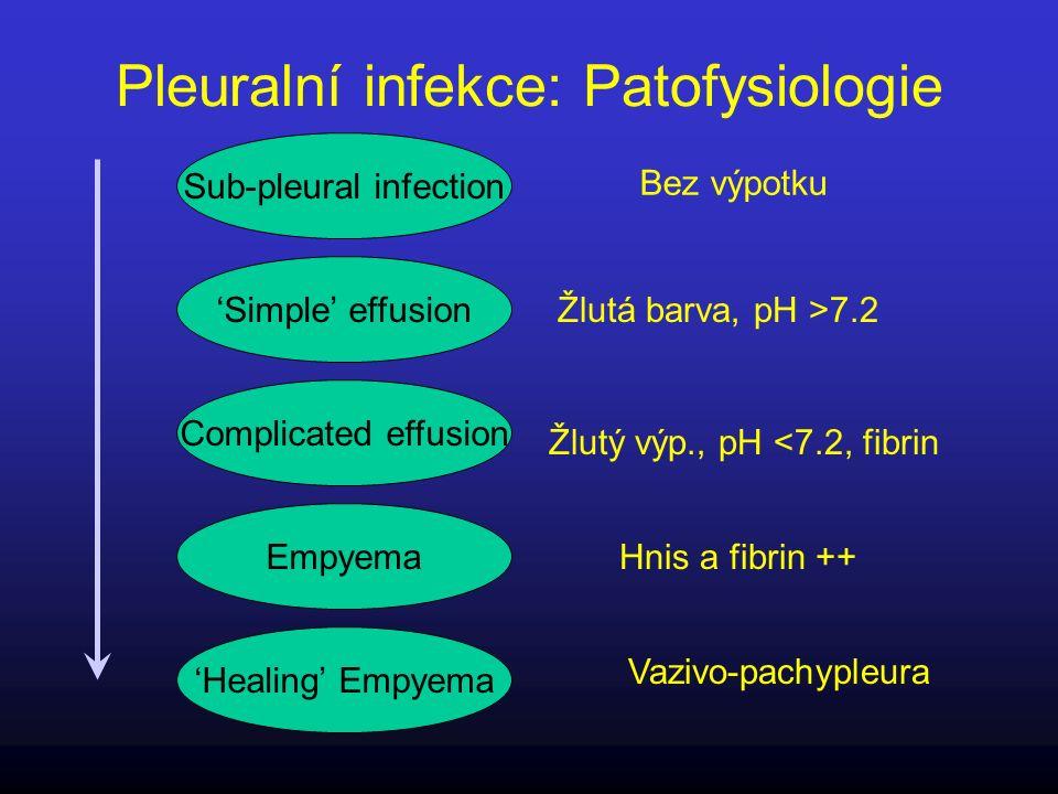Pleuralní infekce: Patofysiologie Empyema 'Simple' effusion Complicated effusion Sub-pleural infection 'Healing' Empyema Bez výpotku Žlutá barva, pH >