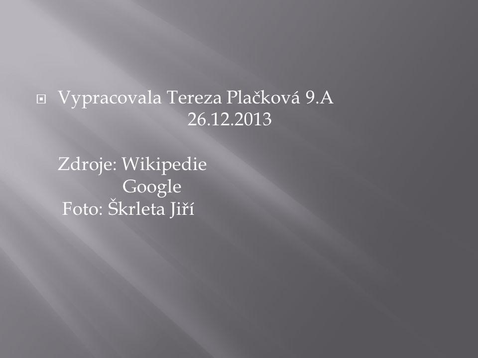  Vypracovala Tereza Plačková 9.A 26.12.2013 Zdroje: Wikipedie Google Foto: Škrleta Jiří