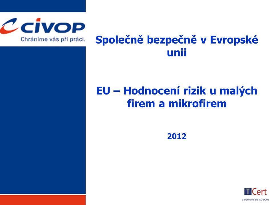 Společně bezpečně v Evropské unii EU – Hodnocení rizik u malých firem a mikrofirem 2012