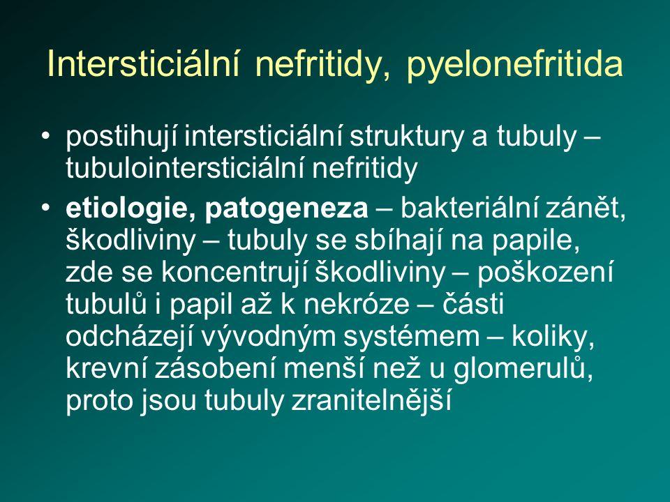 Intersticiální nefritidy, pyelonefritida postihují intersticiální struktury a tubuly – tubulointersticiální nefritidy etiologie, patogeneza – bakteriá