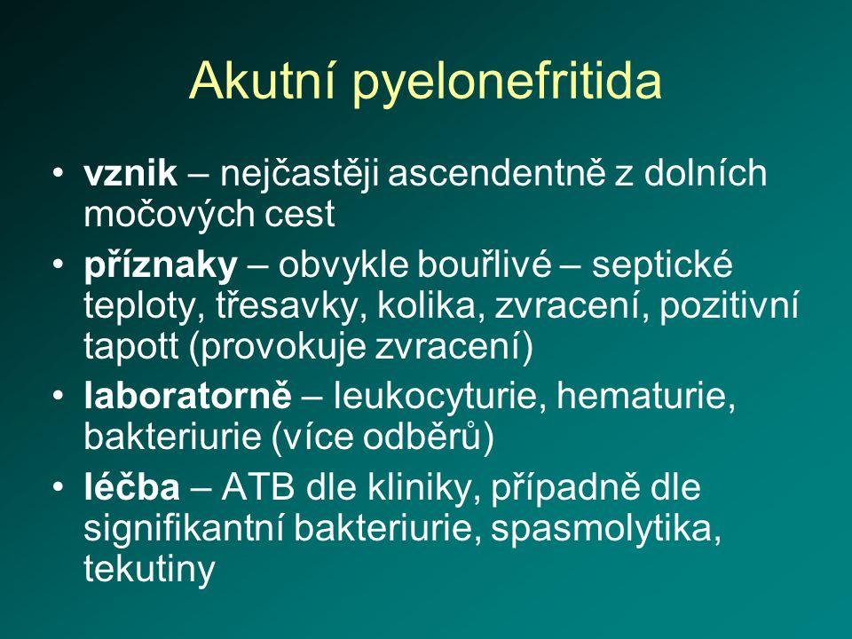 Akutní pyelonefritida vznik – nejčastěji ascendentně z dolních močových cest příznaky – obvykle bouřlivé – septické teploty, třesavky, kolika, zvracen