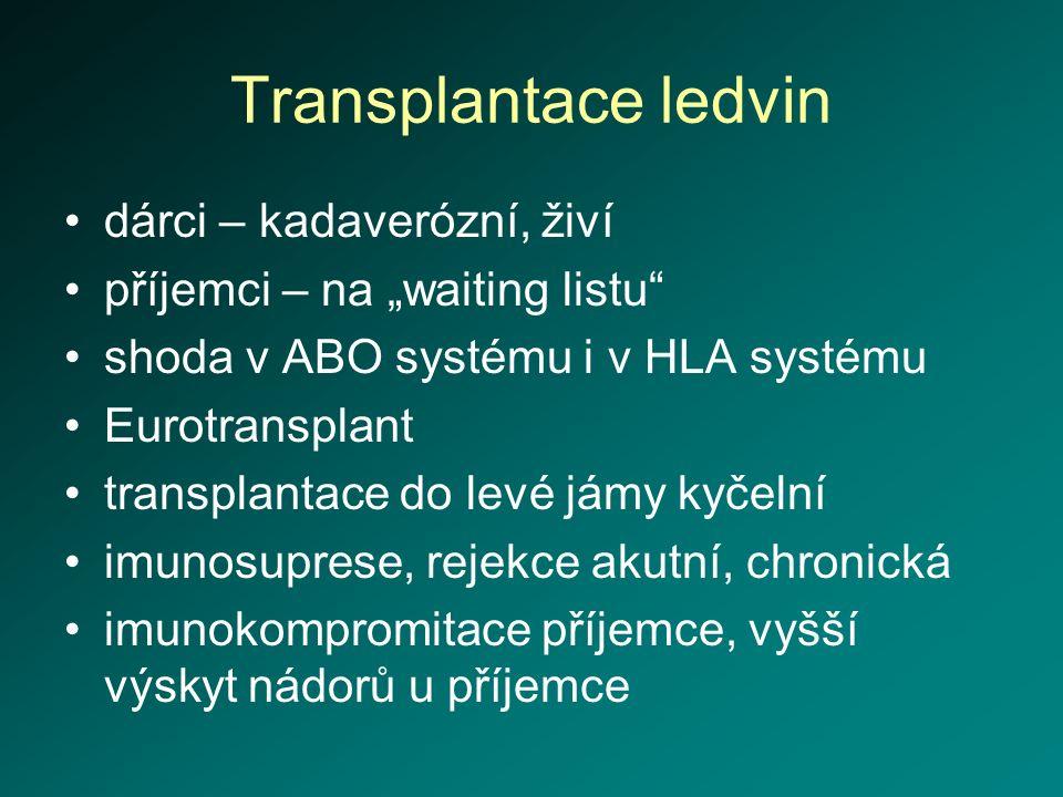 """Transplantace ledvin dárci – kadaverózní, živí příjemci – na """"waiting listu"""" shoda v ABO systému i v HLA systému Eurotransplant transplantace do levé"""