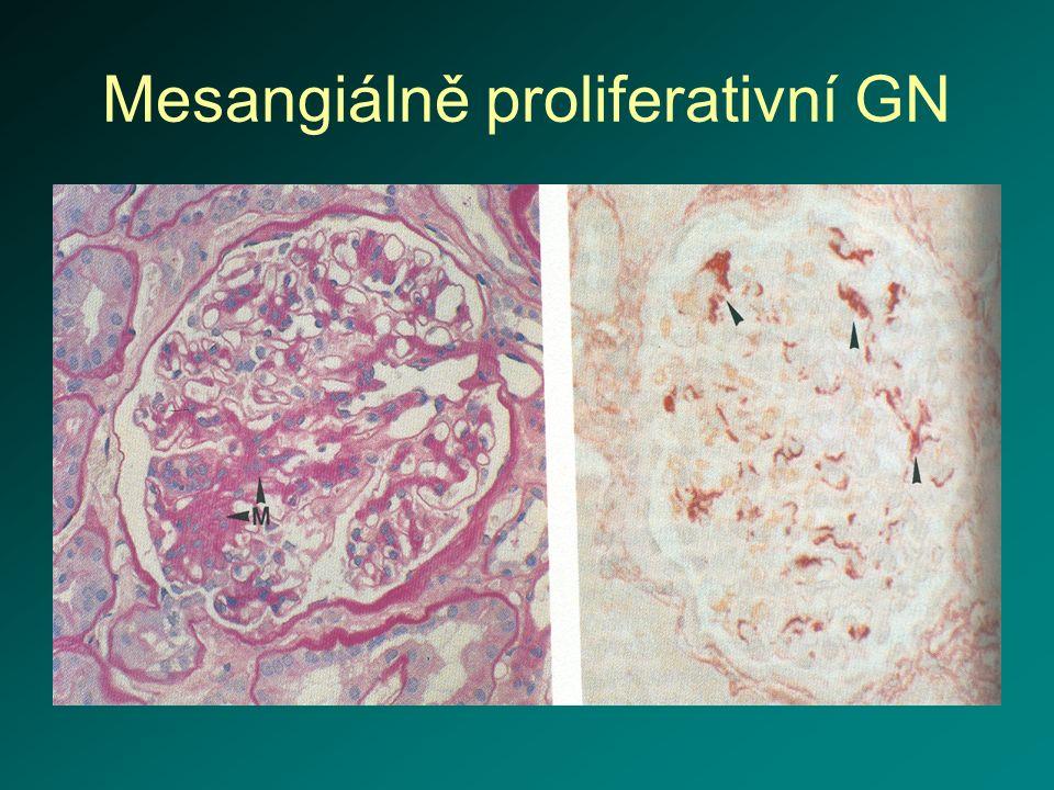 Chronické intersticiální nefritidy I etiologie – při obstrukci močových cest, refluxová nefropatie, analgetická nefropatie, metabolicky podmíněné – urátová, oxalátová, kaliopenická, bakteriálně podmíněná - chronická pyelonefritida, častější u žen, G- ochranné mechanizmy – proud moči, odolnost slizničního povrchu rizikové faktory – instrumentální výkony, litiáza,obstrukce, anatomické anomálie, gravidita, diabetes mellitus