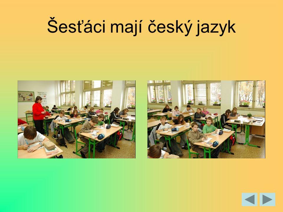 Šesťáci mají český jazyk