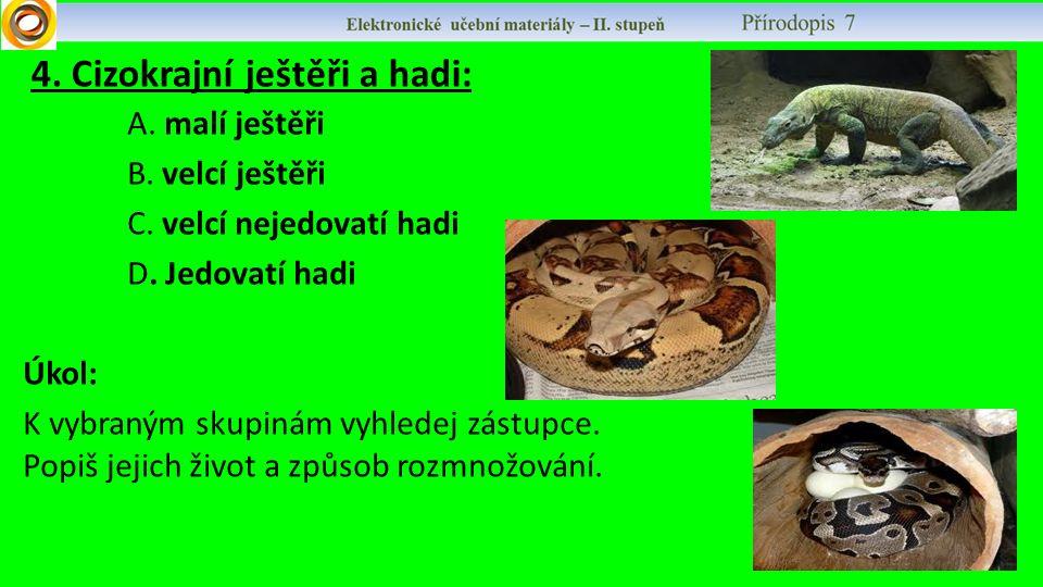 4. Cizokrajní ještěři a hadi: A. malí ještěři B. velcí ještěři C. velcí nejedovatí hadi D. Jedovatí hadi Úkol: K vybraným skupinám vyhledej zástupce.