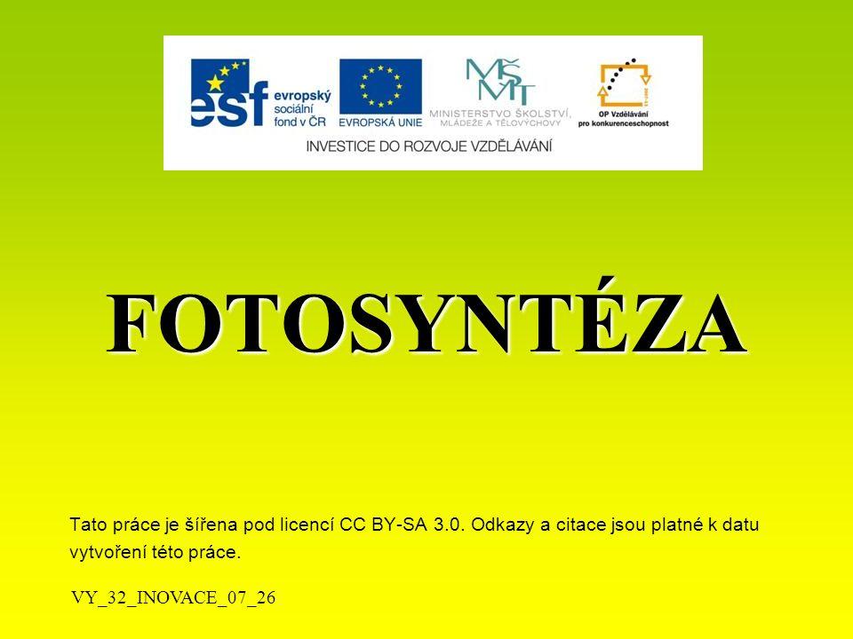 Fotosyntéza /F/   má zásadní význam pro život na Zemi  probíhala již před 3,5 mil.