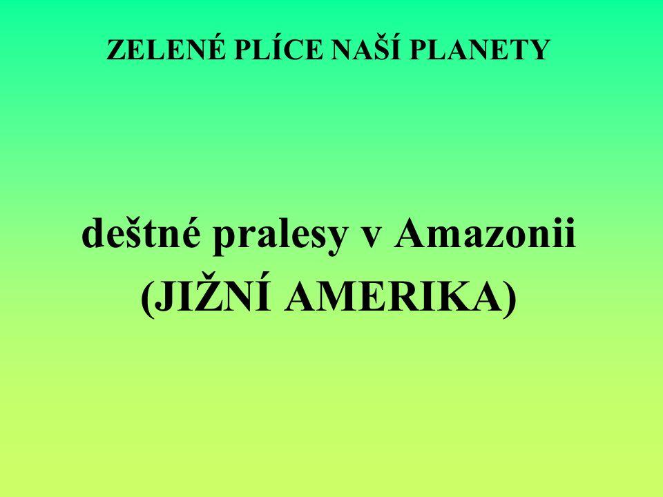 ZELENÉ PLÍCE NAŠÍ PLANETY deštné pralesy v Amazonii (JIŽNÍ AMERIKA)