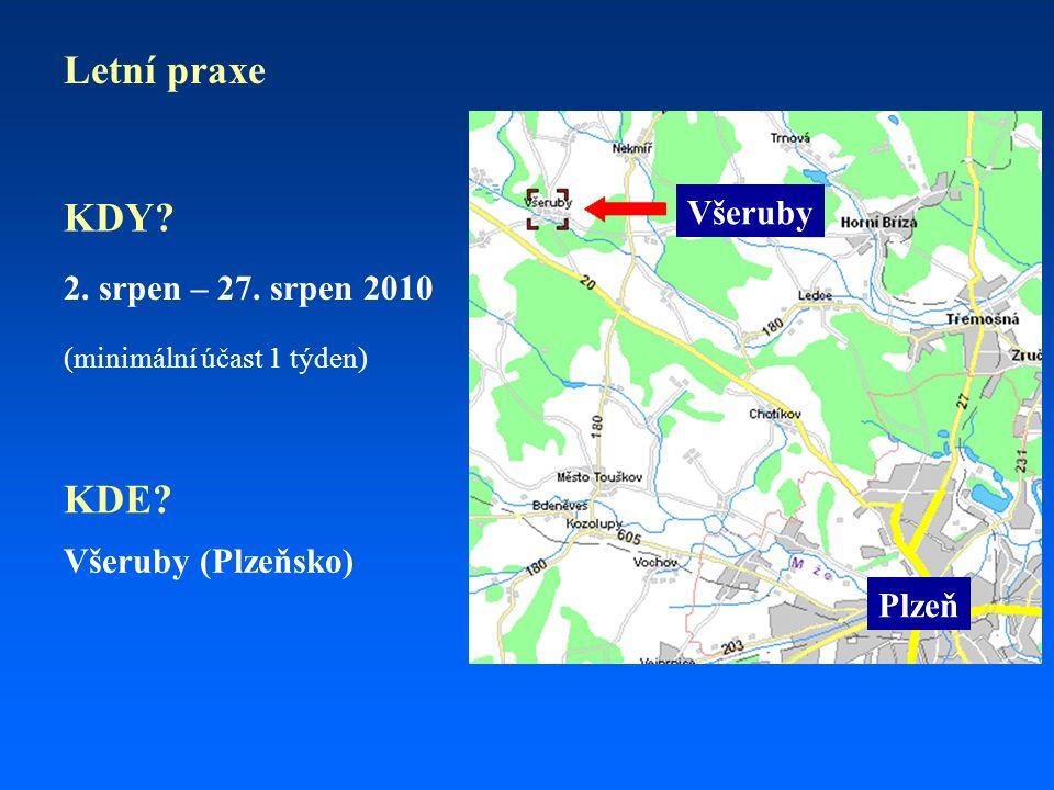 Letní praxe (minimální účast 1 týden) Všeruby (Plzeňsko) 2.
