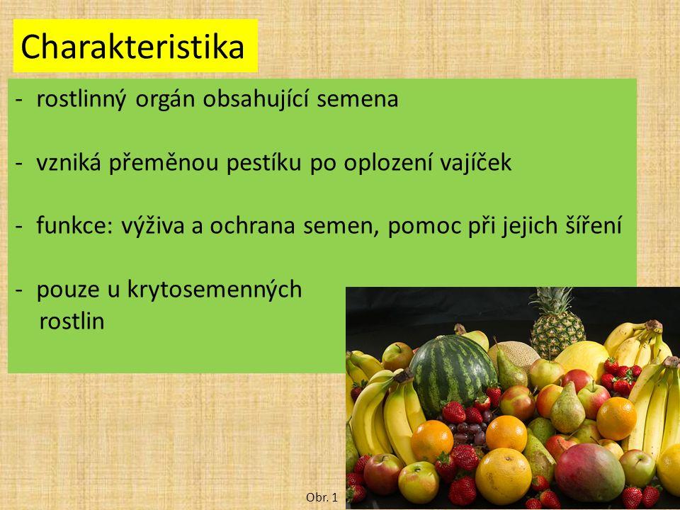 Charakteristika -rostlinný orgán obsahující semena -vzniká přeměnou pestíku po oplození vajíček -funkce: výživa a ochrana semen, pomoc při jejich šíře