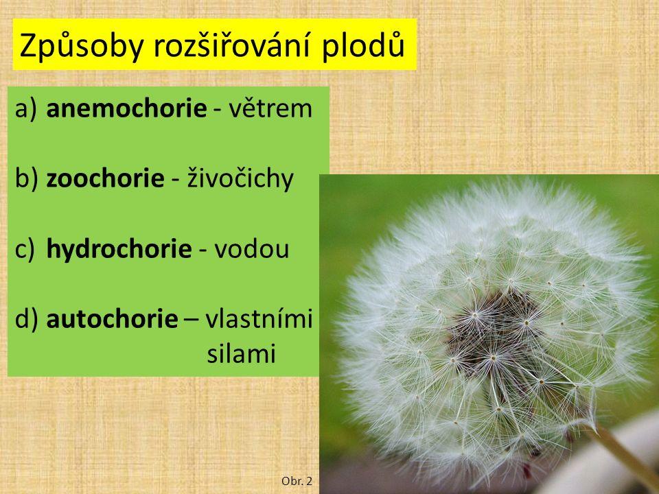 Způsoby rozšiřování plodů a) anemochorie - větrem b) zoochorie - živočichy c) hydrochorie - vodou d) autochorie – vlastními silami Obr. 2